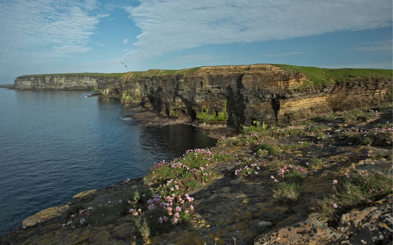 An Overview Of Orkney